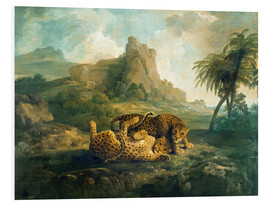 Print på skumplade  Leopards at Play - George Stubbs