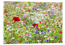 Akrylbillede  Colorful Meadow - Suzka