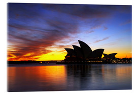Akrylbillede  Sydney Opera House in the evening light - David Wall