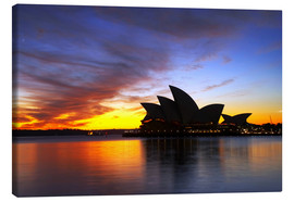 Lærredsbillede  Sydney Opera House in the evening light - David Wall