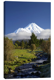 Lærredsbillede  Nature at Mount Taranaki - David Wall