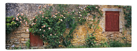 Lærredsbillede  Climbing roses on old stone wall - Ric Ergenbright