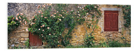 Print på skumplade  Climbing roses on old stone wall - Ric Ergenbright