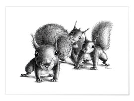 Premium-plakat Three squirrels