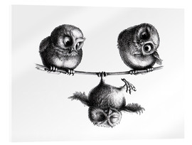 Akrylbillede  Three Owls - Tightrope Walk - Stefan Kahlhammer