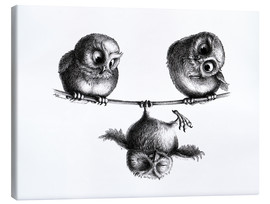 Lærredsbillede  Three Owls - Tightrope Walk - Stefan Kahlhammer