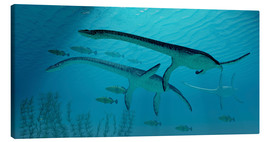 Lærredsbillede  Three Plesiosaurus dinosaurs migrate with a school of fish. - Corey Ford