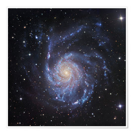 Premium-plakat M101, The Pinwheel Galaxy in Ursa Major