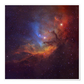 Premium-plakat The Tulip Nebula in Cygnus