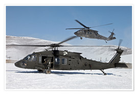 Premium-plakat Two US Army UH-60 Black Hawk helicopter