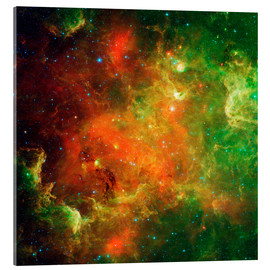 Akrylbillede  Clusters of young stars