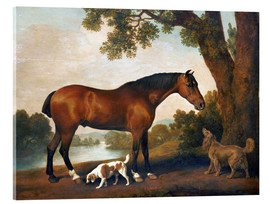 Akrylbillede  Horse and two dogs - George Stubbs