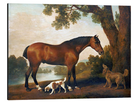 Print på aluminium  Horse and two dogs - George Stubbs
