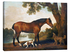 Lærredsbillede  Horse and two dogs - George Stubbs