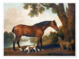 Premium-plakat Horse and two dogs
