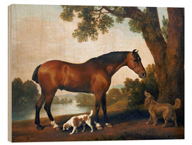 Print på træ  Horse and two dogs - George Stubbs