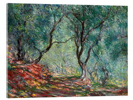 Akrylbillede  Olive Tree Wood in the Moreno Garden - Claude Monet