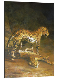 Print på aluminium  Two Leopards lying in the Exeter Exchange - Jacques Laurent Agasse