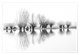 Premium-plakat Willow trees in the mirror image of the flood