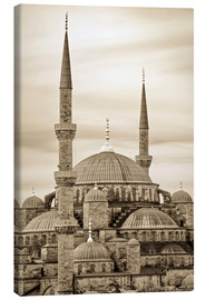 Lærredsbillede  the blue mosque in sepia (Istanbul - Turkey) - gn fotografie