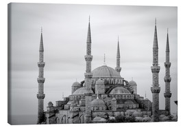 Lærredsbillede  the blue mosque in Istanbul / Turkey - gn fotografie