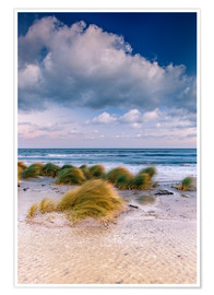 Premium-plakat  Baltic shore magic morning - Sascha Kilmer