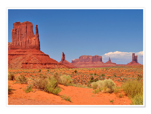Premium-plakat Monument Valley I