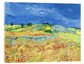 Akrylbillede  Fields with Blooming Poppies - Vincent van Gogh
