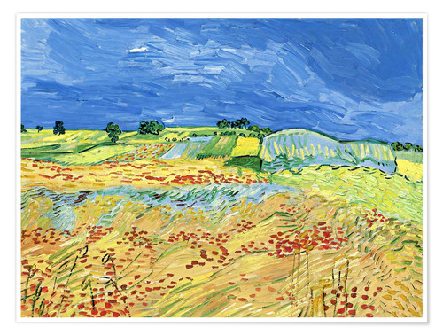Premium-plakat Fields with Blooming Poppies