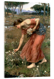 Akrylbillede  Narcissus - John William Waterhouse