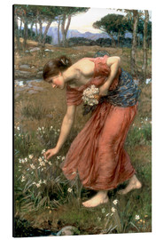 Print på aluminium  Narcissus - John William Waterhouse
