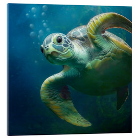 Akrylbillede  Bubbles, the cute sea turtle - Photoplace Creative