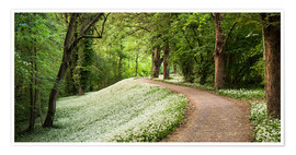Premium-plakat Green white spring's carpat in the forest
