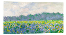 Akrylbillede  Field of Yellow Irises in Giverny - Claude Monet