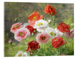 Akrylbillede  Cluster of Poppies - Louis Marie Lemaire