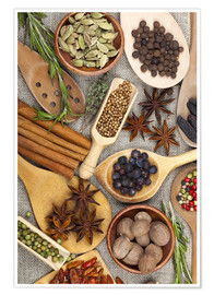 Premium-plakat Spices and Herbs II
