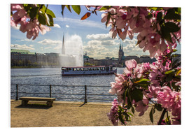 Print på skumplade  Cherry on the Alster in Hamburg for Spring - Dennis Stracke