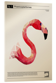 Akrylbillede  fig3 Polygonflamingo Poster - Labelizer