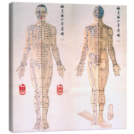 Lærredsbillede  Chinese chart of acupuncture points on a male body