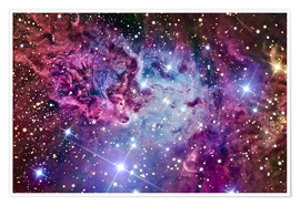 Premium-plakat The Fox Fur Nebula