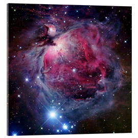 Akrylbillede  The Orion Nebula - Robert Gendler