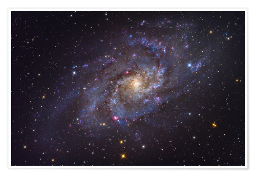 Premium-plakat The Triangulum Galaxy