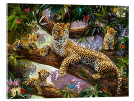 Akrylbillede  Tree Top Leopard Family - Jan Patrik Krasny