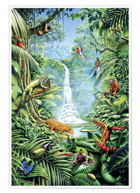 Premium-plakat  Save the rainforest - Gareth Williams