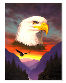 Premium-plakat  Eagle - Chris Hiett
