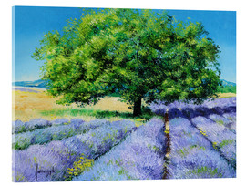 Akrylbillede  Tree and Lavenders - Jean-Marc Janiaczyk