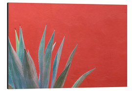 Print på aluminium  Agave in front of red wall - Don Paulson