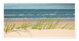 Premium-plakat Dune with fine beach grass