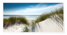 Premium-plakat Dune with fine shining marram grass