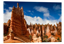 Akrylbillede  Queen's garden trail at Bryce Canyon - Circumnavigation